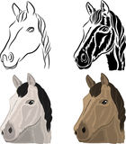 A set of drawings of a horse head Royalty Free Stock Photos