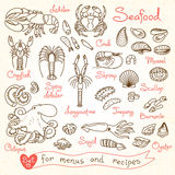 Set drawings of seafood for design menus, recipes, packaging and advertising.  Royalty Free Stock Photo