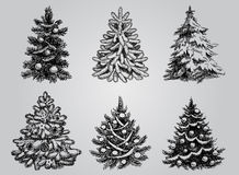 Set of Drawn Christmas Trees. Royalty Free Stock Photos