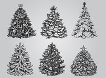 Set of Drawn Christmas Trees. Royalty Free Stock Image