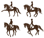 Set of dressage horses with rider Stock Photography
