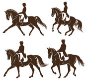 Set of dressage horses with rider Royalty Free Stock Image