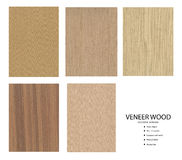 Set drewno Zdjęcie Stock