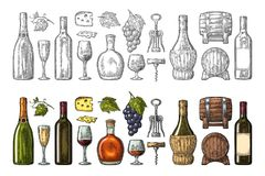 Set drinks made from grapes. Wine, brandy, champagne. Set drinks made from grape. Wine, brandy, champagne bottle, glass, barrel, cheese, barrel, bunch of grapes vector illustration
