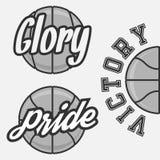 Set drużyna koszykarska logowie Obrazy Royalty Free