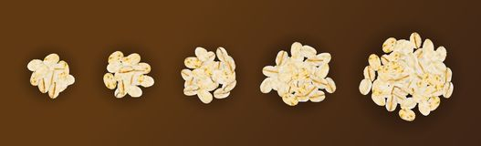 Dry Raw Oat Flakes or Oatmeal Vector Illustration. Set of Dry Raw Oat Flakes Isolated on Brown Background. Vector 3d Realistic Illustration of Rolled Flat Grains stock illustration