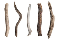 Set of dry tree branch Royalty Free Stock Photography