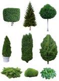 Set drzewa i krzaki Fotografia Royalty Free