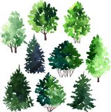 Set drzewa rysuje akwarelą Fotografia Stock