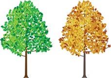 Set drzewo Zdjęcie Stock
