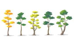 Set drzewo różnorodność, Wektorowa ilustracja ilustracji