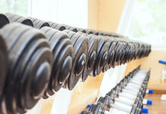 Set of dumbbells lying in a row Stock Images