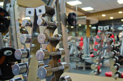 A set of dumbbells on the rack Stock Photos