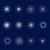 Set dwanaście płatków śniegu na błękitnym tle Jeden set ilustracji