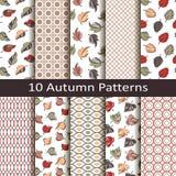 Set dziesięć jesieni wzorów ilustracja wektor