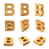 Set dziewięć blokowych drewnianych listów odizolowywających Fotografia Royalty Free