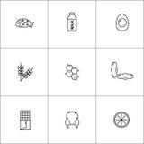 Set dziewięć ikon karmowi allergens Zdjęcie Stock