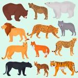 Set dzikie drapieżnika koloru mieszkania ikony Zdjęcia Royalty Free