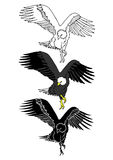 Set of eagle bird animal hand drawn vector illustration Royalty Free Stock Image