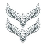 Set of eagles. Bald eagle logo. Wild birds drawing. Head of an eagle. Vector graphics to design Stock Image