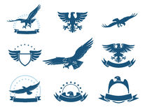 A set of eagles silhouettes Royalty Free Stock Photos