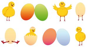 Set of easter chicken and egg Royalty Free Stock Photos