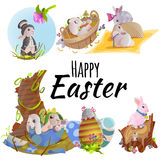 Set of easter chocolate egg hunt bunny basket on green grass decorated flowers, rabbit funny ears, happy spring holiday Stock Photo