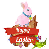 Set of easter chocolate egg hunt bunny basket on green grass decorated flowers, rabbit funny ears, happy spring holiday Royalty Free Stock Photos