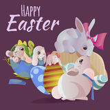 Set of easter chocolate egg hunt bunny basket on green grass decorated flowers, rabbit funny ears, happy spring season Stock Images