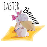 Set of easter chocolate egg hunt bunny basket on green grass decorated flowers, rabbit happy spring season holiday Royalty Free Stock Images