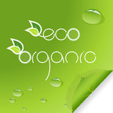 Set of eco ane organic signs with leafs. Royalty Free Stock Images