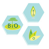 Set of eco, bio icons. Labels of organic products, the nature Stock Photo
