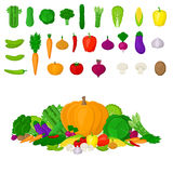Set of Eco fresh colorful vegetables  on white background. Healthy lifestyle or diet vector design element. Healthy Food C Royalty Free Stock Photography