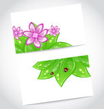 Set of eco friendly cards with green leaves Stock Image
