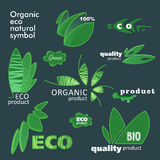 Set of eco friendly organic natural product web icon green logo flat for design. Vector illustration Stock Images