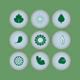 Set of eco icons buttons. With flowers, butterflies and leaves royalty free illustration