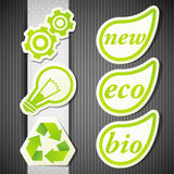 Set of eco labels Royalty Free Stock Image