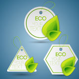 Set of eco labels. Royalty Free Stock Photography