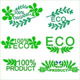 Set of eco. Labels with leaves on a white background, vector design Stock Images