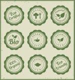 Set eco zieleni odznaki ilustracja wektor