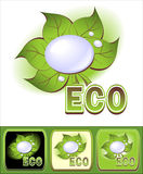 Set Ecologic   icons   icon with leaves and water Stock Photo