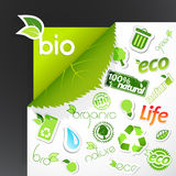 Set of ecology icons. Royalty Free Stock Images