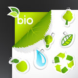 Set of ecology icons. Royalty Free Stock Photo