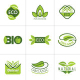 Set of ecology icons with green leaves in vector Royalty Free Stock Photo