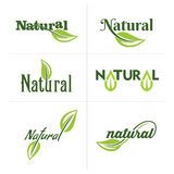Set of ecology icons with green leaves in vector Stock Image
