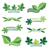 Set of ecology icons or logos with green leaves Royalty Free Stock Images
