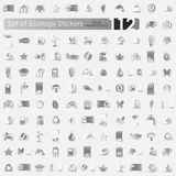 Set of ecology stickers. Ecology vector sticker icons with shadow. Paper cut Royalty Free Stock Image