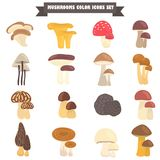 Set of edible and poison mushrooms color flat icons. Set of edible and poison mushrooms color icons Stock Image