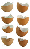 Set of egg shell Royalty Free Stock Image