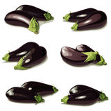 Set of aubergine Royalty Free Stock Images